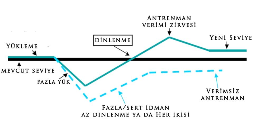 antrenman-dongusu