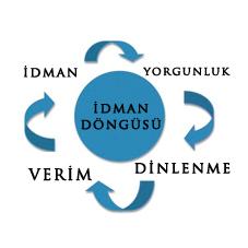 idman-dongusu