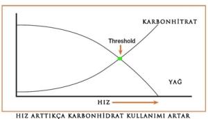 karbo-vs-fat
