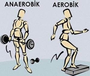 anae vs aero