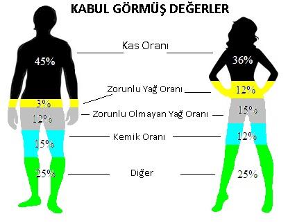 kilo ve koşu hızı4